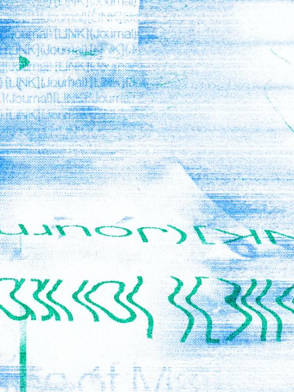 LINK riso scan crop16