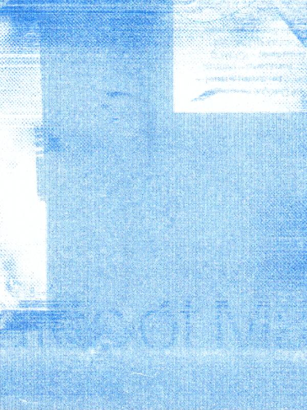 LINK riso scan crop19